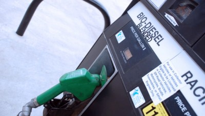 The Government obligates the Use of Biodiesel to Replace Diesel Fuel