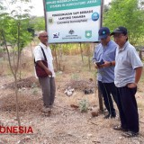 KRRB UNRAM and CSIRO Australia Coach Thousands of Cattle Raisers in Sumbawa