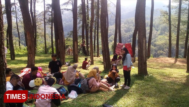 The Breathtaking Tourism Potential of Nongko Ijo Pine Forest