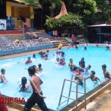 Enjoy the Water Freshness of TAREKO Malang Swimming Pool only for IDR 200