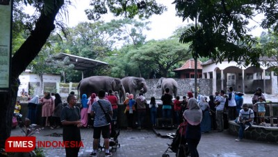 Gembira Loka Zoo was Crowded with Tourists on the Day of Silence