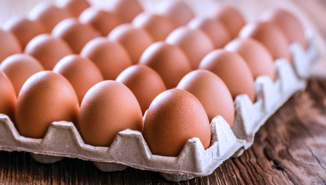 Egg Could Decrease the Risk of Cardiovascular Disease