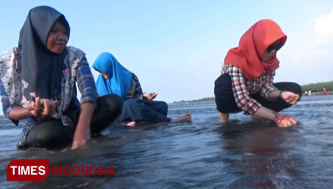 Duta Beach Probolinggo, the Right Place to Dig Up some Clams with Your Kids
