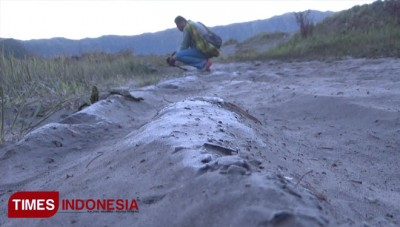 The Frozen Bromo, An Exotic Moment for a Tropical Country