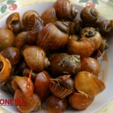 Kreco, the Apple Snail Soup which will Give You an Exotic Taste