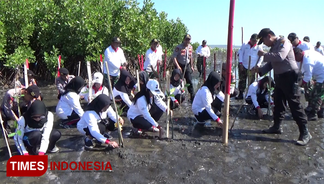 Probolinggo Planted more Mangroves on Their Beaches to Prevent the Ecosystem Destruction
