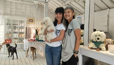 Dog Grocer Cafe, a Pet Shop in Bali Where Your Pets are Treated as a Family