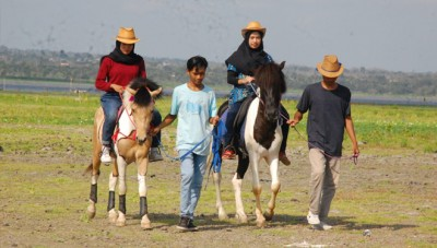 Cross the Bendungan Batujai Central Lombok Meadow by Riding on a Horse Back