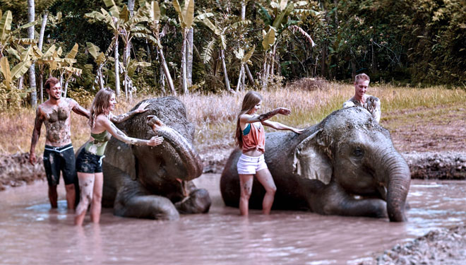 The Sanctoo Villas & Spa and Bali Zoo Become Popular with Celebrities