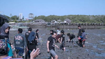 Aston Denpasar Hotel and Convention Center Plants Some Mangrove at the Kampoeng Kepiting Tuban