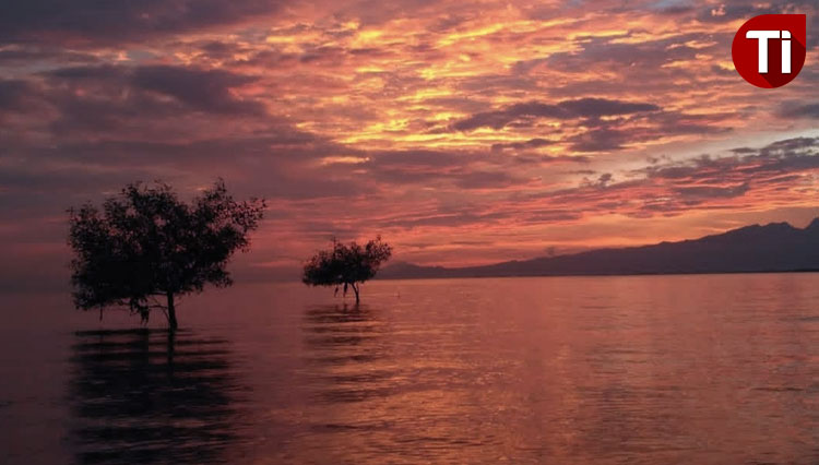 Sunrise at Pantai Bandar Segara, Probolinggo (picture by: Nova for TIMES Indonesia)