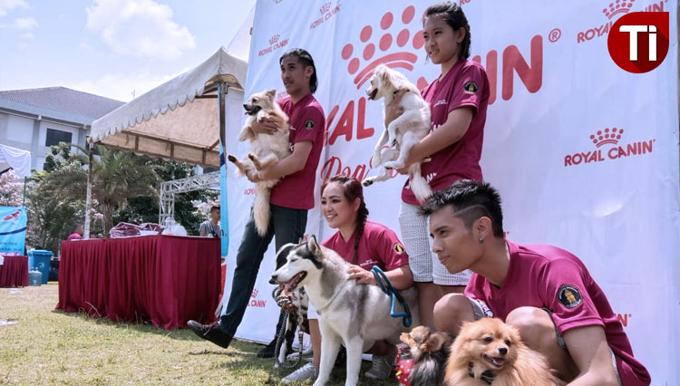 Dog Lovers Community of Malang to Say No to Dog Meat Trade
