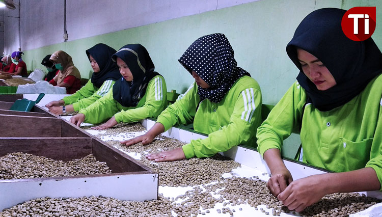 Robusta Coffee of Banyuwangi Goes to Foreign Countries