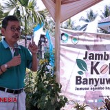 Banyuwangi could Take the Coffee Farm to Another Level as an Agrotourism