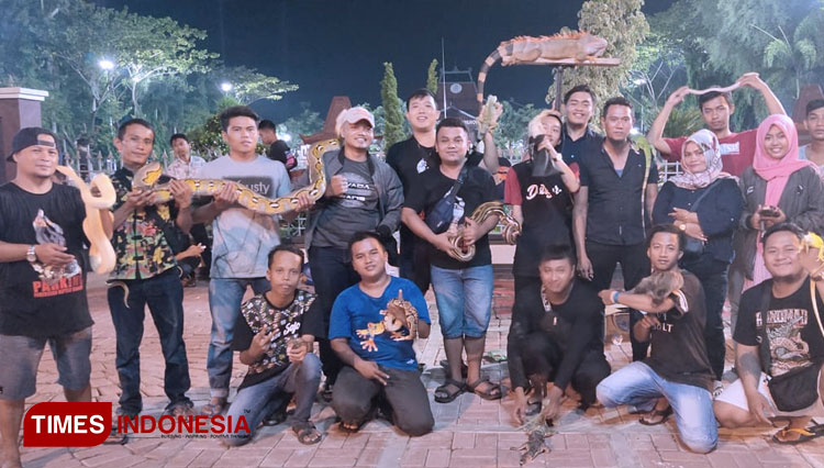 Pamekasan Reptile Kingdom (Parking) community on their gathering at the City Hall of Pamekasan. (Picture by: Akhmad Syafi