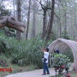 Step Back in Time to the Jurassic Era at Mojosemi Forest Park Magetan