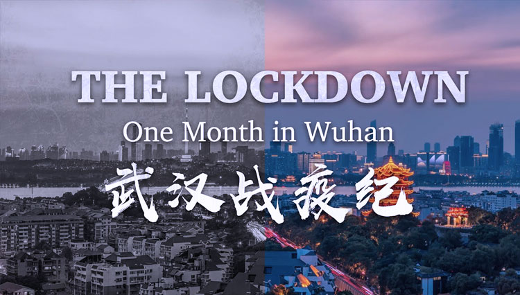Documentary Movie, The Lockdown: One Month in Wuhan (2020)