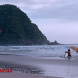 Get an Amazing Experienece of Surfing at Pulau Merah Beach Banyuwangi