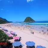 Banyuwangi Offers Free Transport to Several of Their Tourist Destinations