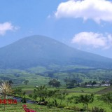 Attention: No More Littering at Mount Dempo