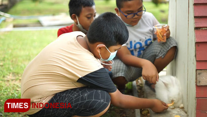 Get Your Kids to Know Some Exotic Animals at Jember Mini Zoo