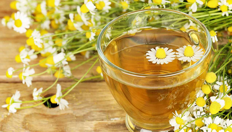 Chamomile Tea, the Best Tea for Relaxing