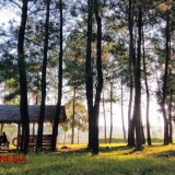 Exchange Your Trash for a Ticket at All Tourist Destinations in Banyuwangi